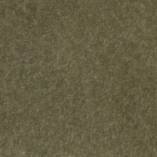 Bayleaf Mohair Drapery and Upholstery Fabric by Scalamandre