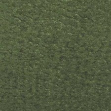 367510 71069 257 Moss by Robert Allen