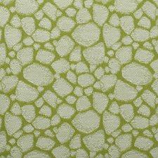 371584 90887 213 Lime by Robert Allen