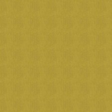 Citron Solid Drapery and Upholstery Fabric by Stroheim