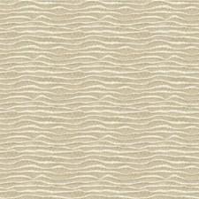 Light Grey Modern Drapery and Upholstery Fabric by Kravet