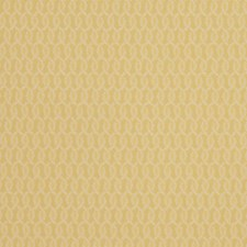 Citronella Scrollwork Drapery and Upholstery Fabric by Stroheim