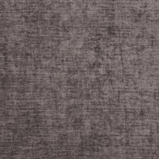 Iris Solid Drapery and Upholstery Fabric by Trend