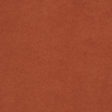 Terra Cotta Solid Drapery and Upholstery Fabric by Trend