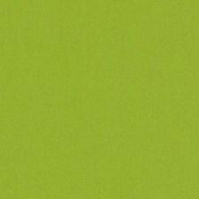 511890 DK61731 609 Wasabi by Robert Allen