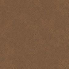 518749 DF16285 136 Spice by Robert Allen