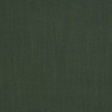 Hunter Solid Drapery and Upholstery Fabric by Trend