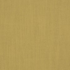 Citrine Solid Drapery and Upholstery Fabric by Trend