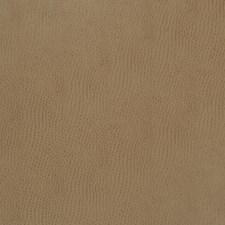 Chutney Animal Drapery and Upholstery Fabric by Fabricut