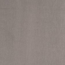 Whisper Texture Plain Drapery and Upholstery Fabric by Trend