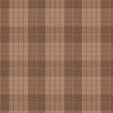 Mink Check Drapery and Upholstery Fabric by Fabricut