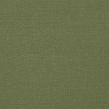 Evergreen Solid Drapery and Upholstery Fabric by Stroheim