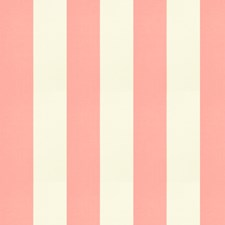 Blush Stripes Drapery and Upholstery Fabric by Trend
