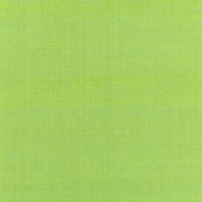 Kiwi Drapery and Upholstery Fabric by Schumacher