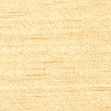 Honey Texture Plain Drapery and Upholstery Fabric by Trend