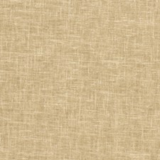 Harvest Solid Drapery and Upholstery Fabric by Trend