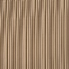 Birch Stripes Drapery and Upholstery Fabric by Trend