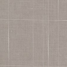 Fossil Check Drapery and Upholstery Fabric by Trend