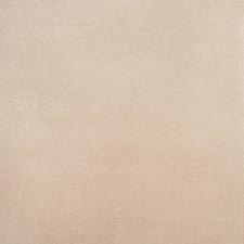 Tussah Solid Drapery and Upholstery Fabric by Trend