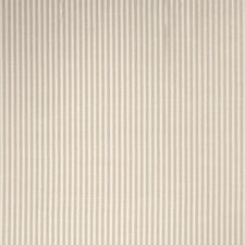 Chardonnay Stripes Drapery and Upholstery Fabric by Trend