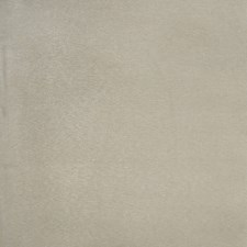 Cypress Solid Drapery and Upholstery Fabric by Trend