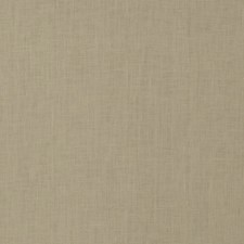 Rice Solid Drapery and Upholstery Fabric by Trend