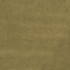 Sepia Solid Drapery and Upholstery Fabric by Trend