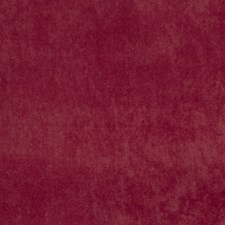 Cabernet Solid Drapery and Upholstery Fabric by Trend