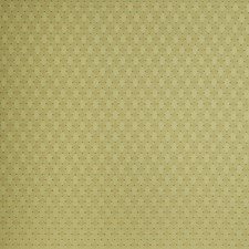 Bouquet Diamond Drapery and Upholstery Fabric by Trend
