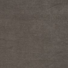 Smoked Pearl Solid Drapery and Upholstery Fabric by Trend