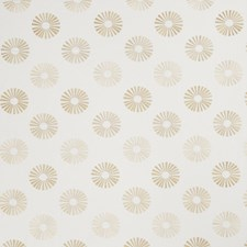 Cashew Embroidery Drapery and Upholstery Fabric by Trend