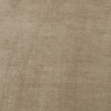 Nougat Solid Drapery and Upholstery Fabric by Stroheim