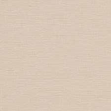 Fawn Solid Drapery and Upholstery Fabric by Trend