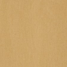Mimosa Solid Drapery and Upholstery Fabric by Trend