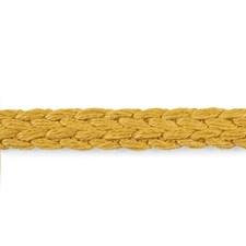 Gold Trim by Schumacher