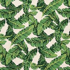 Green/Ivory Drapery and Upholstery Fabric by Schumacher