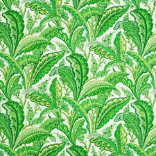 Palm Botanical Drapery and Upholstery Fabric by Brunschwig & Fils