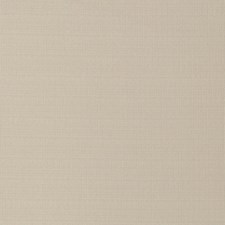 Ecru Solid Drapery and Upholstery Fabric by Trend