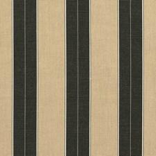 Tuxedo Drapery and Upholstery Fabric by Sunbrella