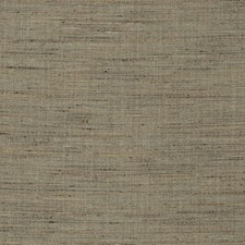 Pyrite Texture Plain Drapery and Upholstery Fabric by Fabricut