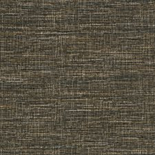 Licorice Texture Plain Drapery and Upholstery Fabric by Trend