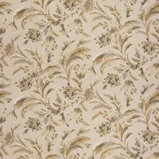 Blushtone Floral Drapery and Upholstery Fabric by Vervain