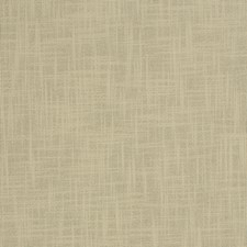 Birch Drapery and Upholstery Fabric by Trend