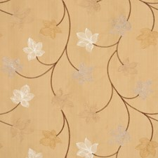 Amber Drapery and Upholstery Fabric by RM Coco