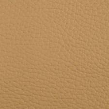 Beluga Dune Drapery and Upholstery Fabric by Greenhouse