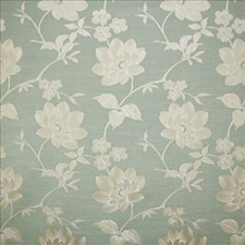 Bayou Drapery and Upholstery Fabric by Kasmir