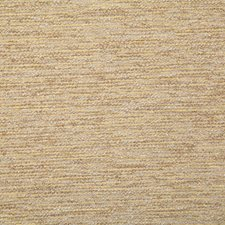 Dijon Solid Drapery and Upholstery Fabric by Pindler