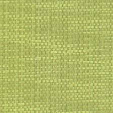 Endive Drapery and Upholstery Fabric by Kasmir