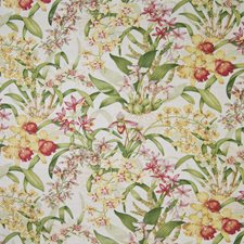 Orchid Tropical Drapery and Upholstery Fabric by Greenhouse