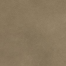 Pebble Solid Drapery and Upholstery Fabric by Greenhouse